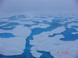 Aquamarine melt ponds in multi-year ice. Photo