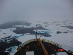 Passing through ice floes in a refreezing Arctic Ocean Photo