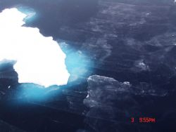 Nilas ice and frazil ice forming in open water around an ice floe. Photo