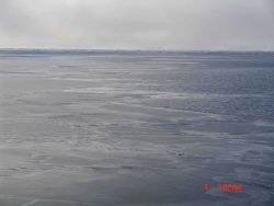 Nilas ice with open water and frazil ice to the right Photo
