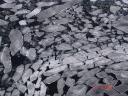 Brash ice Photo