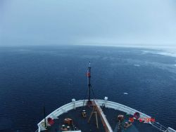 Looking over the bow of the USCGS HEALY at a stretch of open water on which frazil and nilas ice are forming Photo