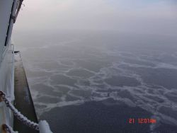 New ice forming over large area of open water with frost flowers on a foggy misty day. Photo