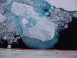 Small floe surrounded by brash ice Photo