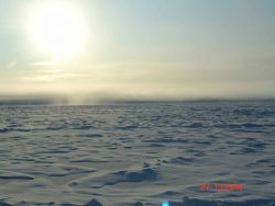 Hummocky multi-year ice with ridges and refrozen melt ponds Photo