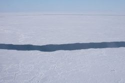 Typical lead in the pack ice containing overwintering narwhals Photo