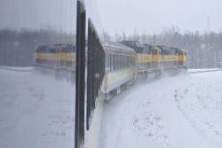 Running through a snow squall along the Alaska Railroad Aurora Winter Train. Photo