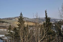 A scene along the Alaska Railroad Aurora Winter Train Image