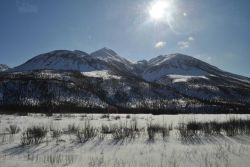 A scene along the Dalton Highway. Image