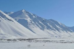 A scene along the Dalton Highway in the Brooks Range Image