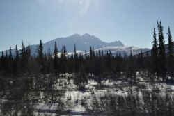 A scene along the Dalton Highway Image