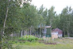 A home and garden at Talkeetna, the Gateway to Mt Photo