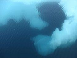 Subsurface ice seen below melting floe. Photo