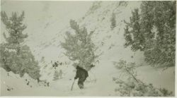 Party chief Lieutenant Jack Johnson in the high Sierra on the west side of Owens Valley, California Photo