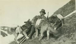 A lightkeeper with his trusty pack dogs on the way to a station during triangulation operations in central Alaska. Image