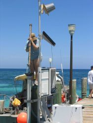 Leveling operations on Loggerhead Key in support of tidal observations. Photo