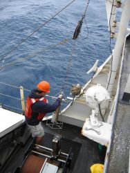 Deploying Seabird CTD for determining velocity of sound in seawater. Photo