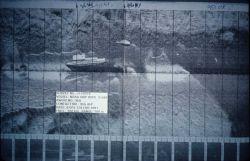Side scan sonar image of vessel. Photo