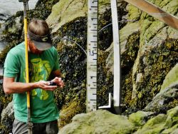 Determining position of tide gage. Photo
