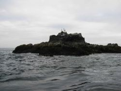 A horizontal control station with antenna for communicating with ship established on an offshore rock Photo