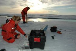 Rolf Gradinger works on an ice core while Mette Nielson takes measurements on a core already brought to the surface. Photo