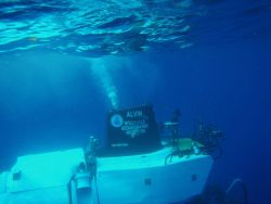 The ALVIN submersible begins its descent to the bottom Photo