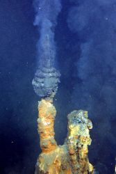 A good example of one of the many active hydrothermal chimneys (commonly known as black smokers) that occur at the NW caldera site Photo