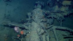 Pivot gun on wreck designated 15577 with parts of pivot gun carriage and small anchor to right of gun in image Photo