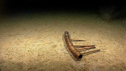 Marine debris - some sort of man-modified wooden artifact. Photo