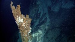 A stalagmite-like spire of mineral material precipitated from a hydrothermal vent. Image