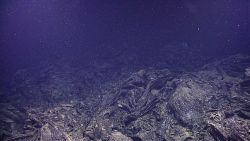 A lava collapse feature in the vicinity of a hydrothermal vent Image