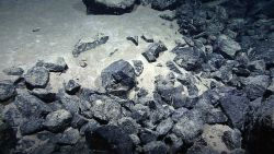 Angular boulders that have never been subjected to surface erosion being slowly covered by sediment Image