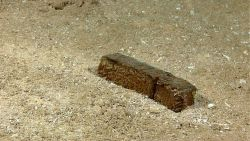 Marine debris - a sawed off wood block that has sunk to the bottom. Photo