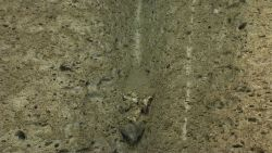A sediment chute with a rock wedged in it Photo
