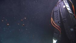 Globules of oil? and methane gas? rising past the ROV. Photo