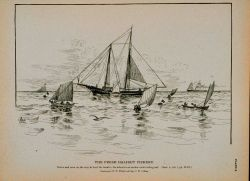 Dories and crew on the way to haul the trawls The schooner at anchor under riding sail Drawing by H Photo