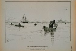 Hand-line dory cod fishing on the Grand Bank Drawing by H Photo