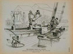Discharging fare of George's Bank cod at Gloucester wharf Drawing by H Photo