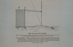 Attaching stone anchors and buoy lines to end of gangs of nets Norwegian method From Bulletin U.S Photo