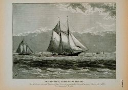 Mackerel schooner cruising in Massachusetts Bay Lookout on foretop on the watch for schools From photograph by T.W Photo