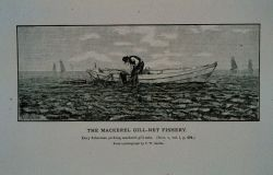 Dory fishermen picking mackerel gill-nets From photograph by T.W Photo