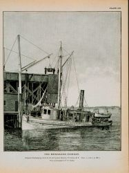 Menhaden steamer discharging catch at oil and guano factory, Tiverton, R.I Photo