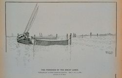 Lifting the pot at Kelley's pound-net, Lake Erie Drawing by H Photo