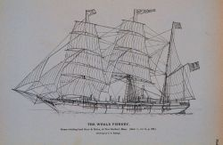 Steam whaling-bark Mary & Helen, of New Bedford, Massachusetts Afterwards the Rodgers of the Jeanette search expedition Drawing by C Photo