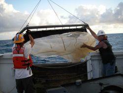 Teacher at Sea on board the NOAA Ship OREGON II. Photo
