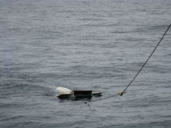 Manta net surface tow. Photo