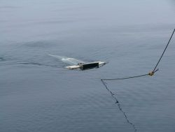 Manta net surface tow net. Photo