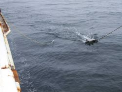 Manta surface tow net deployed. Photo