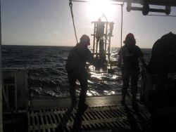 Deploying CTD (Conductivity, Temperature, Depth sensor) Photo