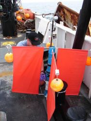 An improvised drifter buoy that minimizes wind surface and maximizes effect of water on